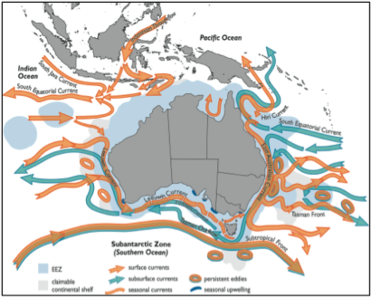 Major Boundary Currents and Inter-basin Flows: IMOS.org.au on north atlantic ocean map, indian monsoon map, world ocean, north atlantic current, physical oceanography, rip current, ocean gyre, continental shelf, thermohaline circulation, southern ocean map, kuroshio current, california ocean current map, world currents map, mid-ocean ridge, wind wave, indian pollution map, current ocean temperature map, indian climate map, indian science map, southwest indian ridge map, northern pacific ocean map, longshore drift, pacific ocean floor map, indian mountains map, california current, wind currents map, south west monsoon ocean current map, indian rivers map, abyssal plain, south atlantic ocean islands map, the atlantic ocean on map, arctic ocean map, antarctic circumpolar current, east australian current, north central south america map, humboldt current,