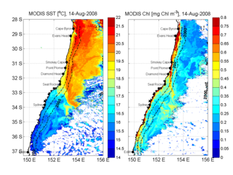 Satellite image of sea surface temperature (left) and ocean colour (right) along the east coast of Australia. (Courtesy M. Baird)