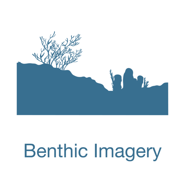 Benthic Imagery